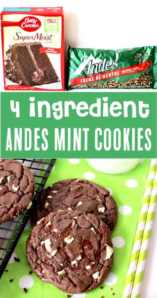 Cake Mix Cookies Recipes Easy Chocolate Mint Cookie