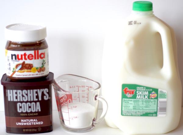 Best Easy Nutella Hot Chocolate Recipe