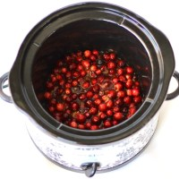 Easy Crockpot Cranberry Sauce Recipe! {5 Ingredients}
