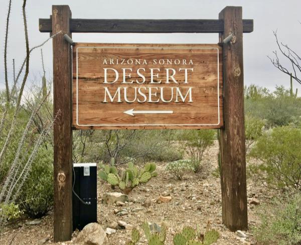 Arizona Sonora Desert Museum