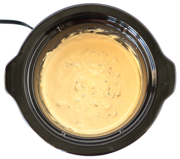 Crock Pot French Onion Dip Recipe