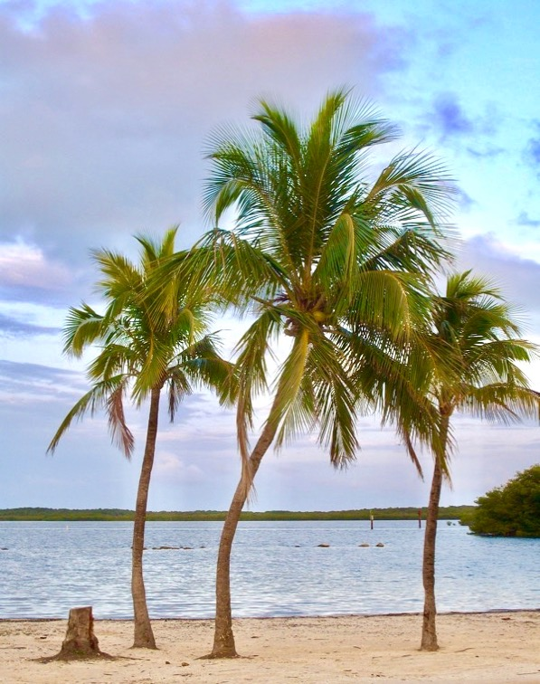 Florida Keys Travel Tips Vacation Ideas