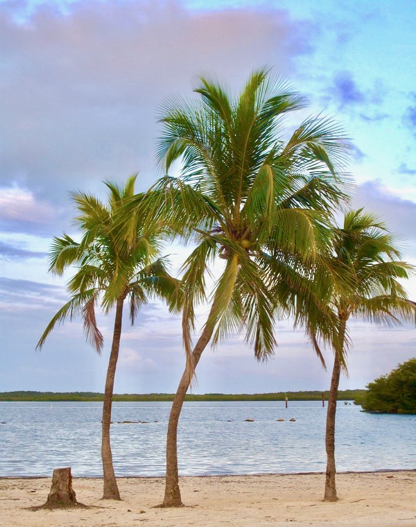 Florida Keys Travel Tips