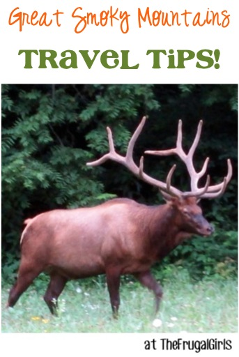 Great Smoky Mountains National Park Travel Tips at TheFrugalGirls.com