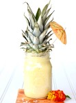 Tropical Pineapple Smoothie Recipe
