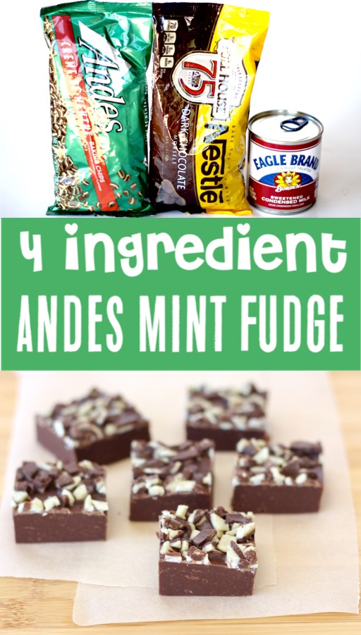 Chocolate Fudge Recipes Easy Andes Mint Fudge Recipe