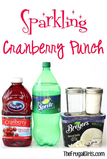 Sparkling Cranberry Party Punch Recipe at TheFrugalGirls.com