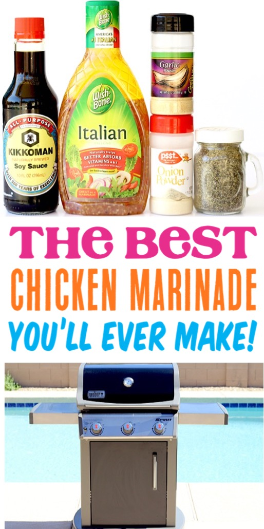 Chicken Marinade for the Grill or Baked in the Oven Easy Recipes