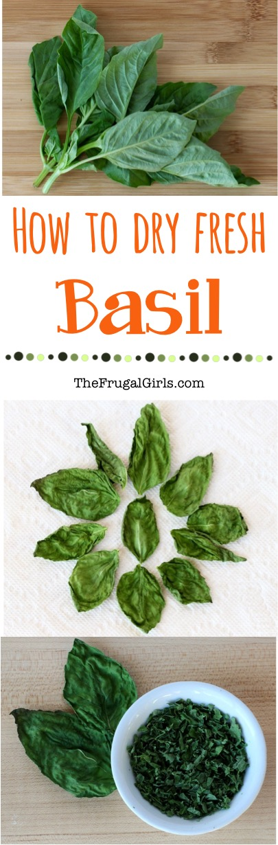 How to Dry Fresh Basil Tip from TheFrugalGirls.com
