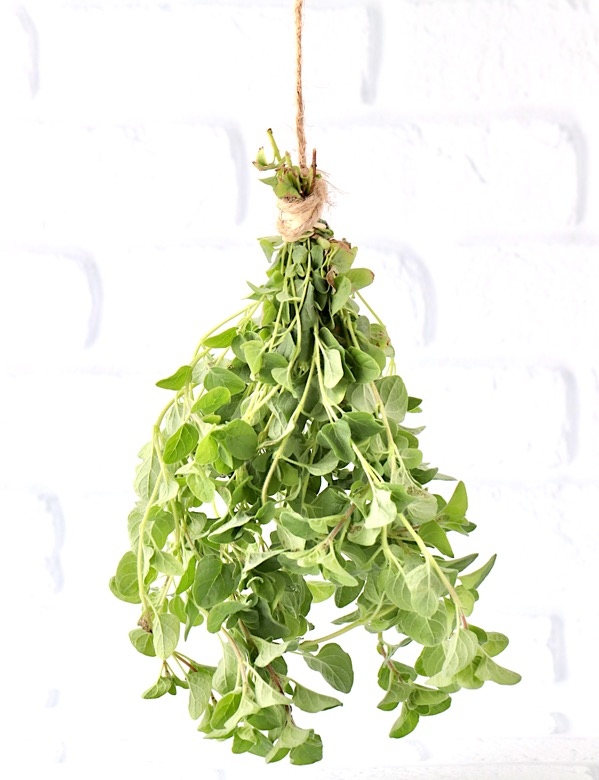 How to Dry Oregano Leaves Naturally