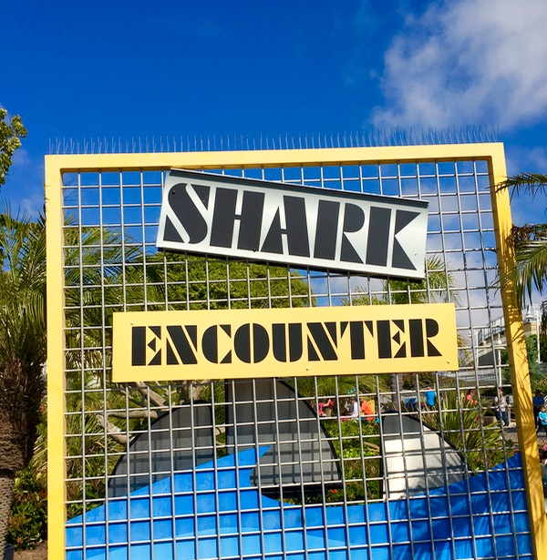 SeaWorld Shark Encounter
