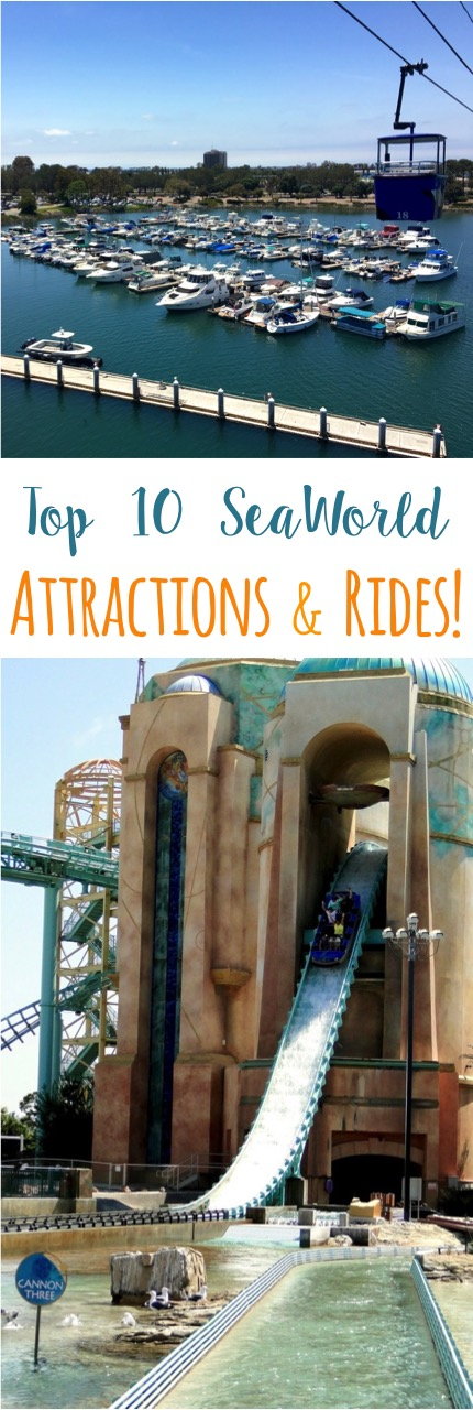 Top 10 SeaWorld Attractions and Rides