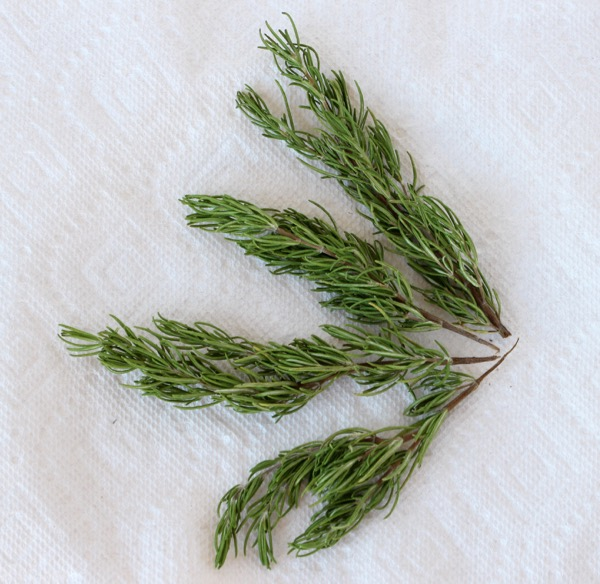 DIY Dried Rosemary Trick at TheFrugalGirls.com