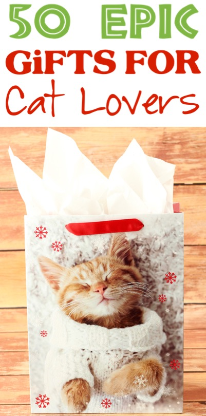 Cat Gifts for People Fun DIY Gift Basket Ideas for Cat Lovers