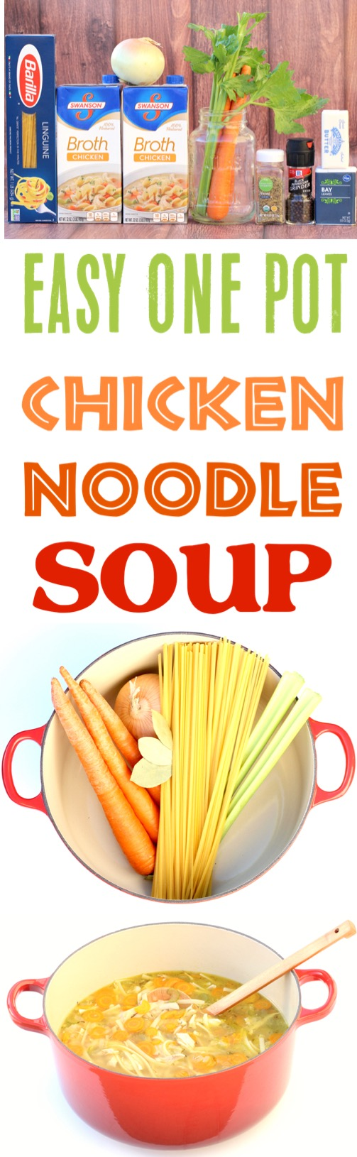 Chicken Noodle Soup Easy Homemade Recipe