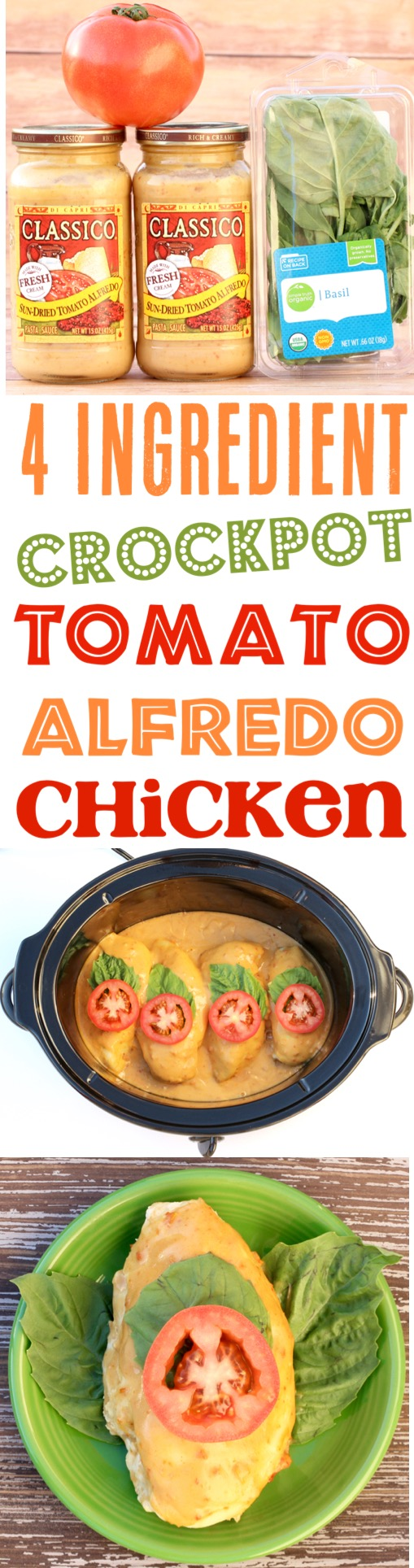 Crockpot Alfredo Chicken Easy Tomato Basil Slow Cooker Alfredo