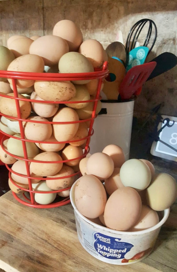 How to Use up Fresh Eggs