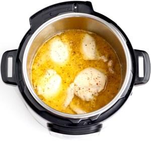 Instant Pot Italian Chicken! {just 2 Ingredients}