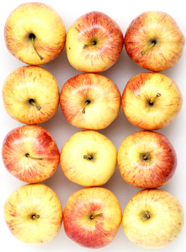 Cinnamon Apple Chips Recipe in the Dehydrator