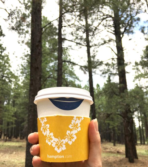 Flagstaff Hotels Free Breakfast