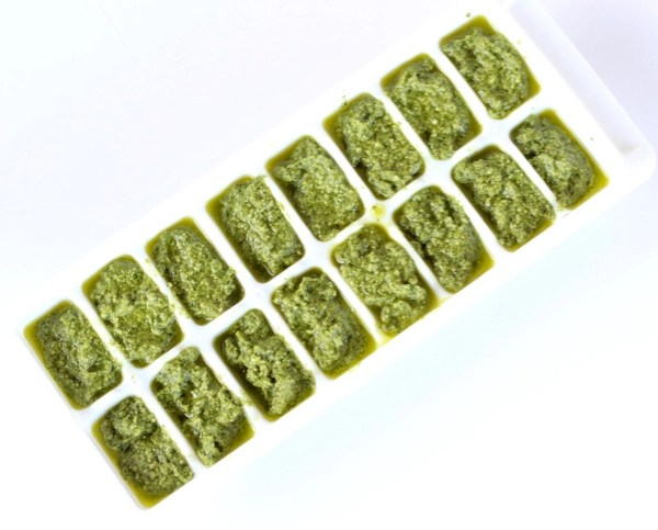 How to Freeze Pesto with Fresh Basil