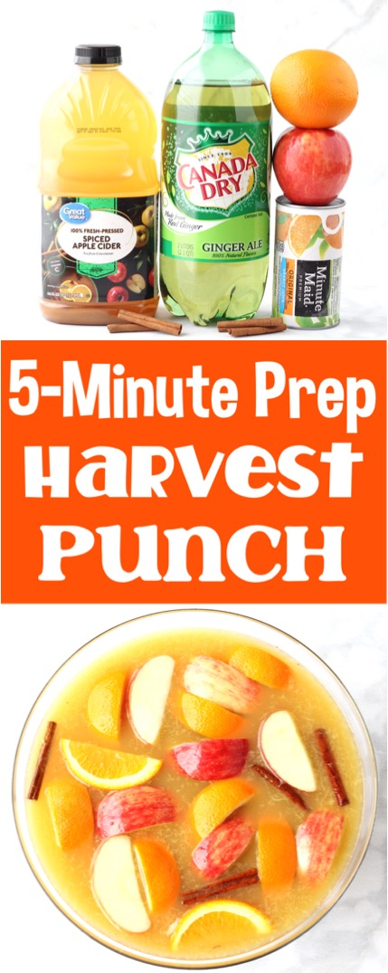 Party Punch Recipes Fall Harvest Apple Spice Punch Recipe
