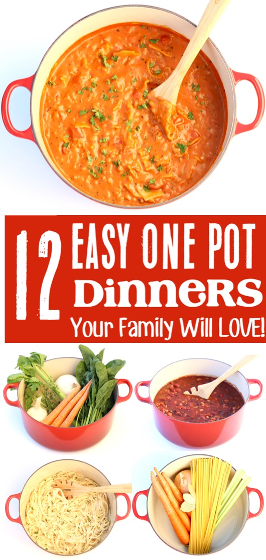 Easy Dinner Recipes for Family with Kids