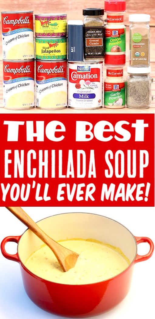 Soup Recipes Easy Chicken Enchilada Soup