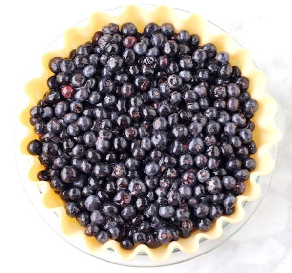 Homemade Blueberry Pie Recipe Easy