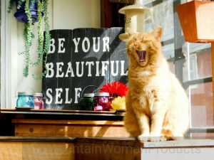 Frugal Hippie Mascot red cat yawning with sign that reads be your beautiful self