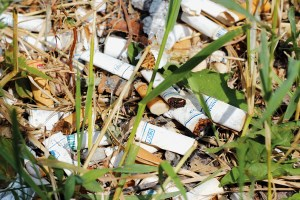 CigaretteButts_Marta_Kierkus_Online