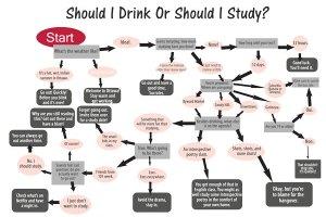 WEB_FEA_drink-or-study-flowchart-Lindsay-MacMillan (1)