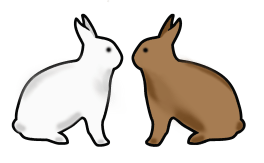 Rabbits_feature