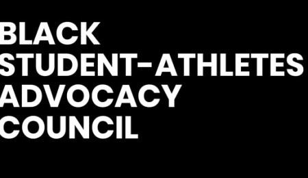 Provided logo for BSAAC