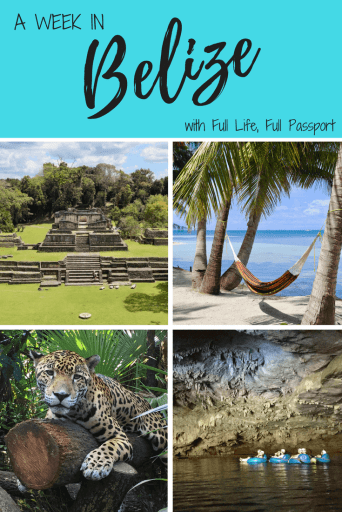 Week in Belize Graphic