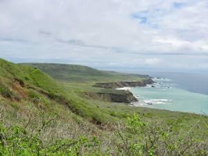 Rocky green coastline of Isla de la Plata
