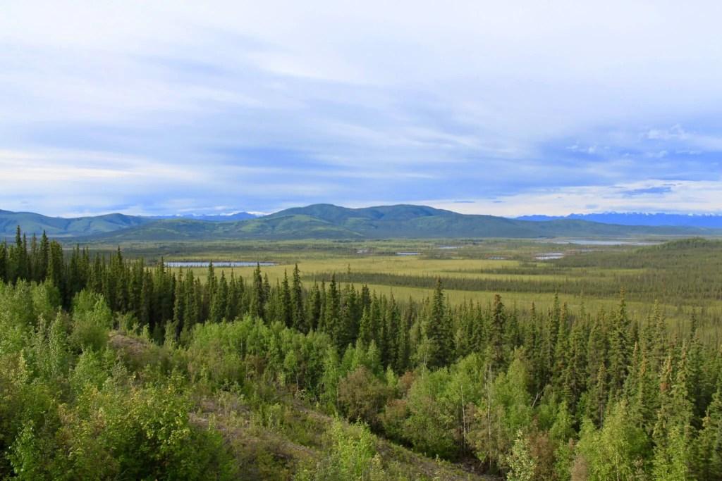 Trees, mountain, and vast Alaskan plain in Tetlin National Wildlife Refuge