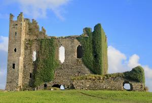 Ruins of Ballycarbery Castle covered in ivy