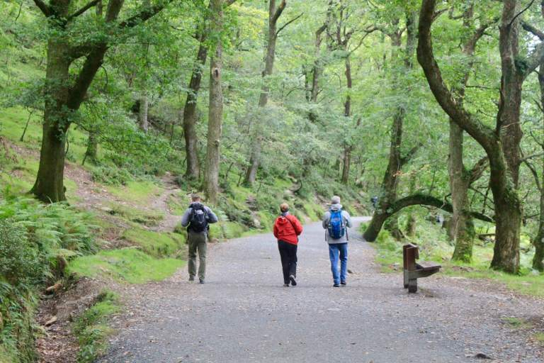 M and his parents walking on a wide path through a forest