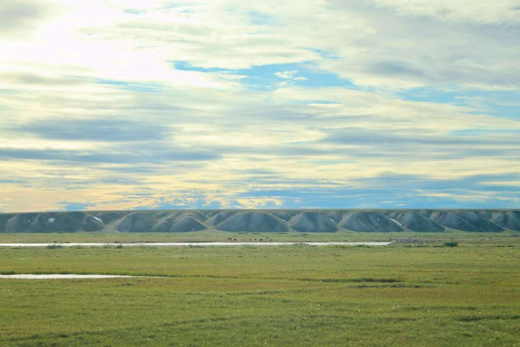 Starting off down the Dalton Highway in Alaska - flat tundra with tiny musk ox in the distance