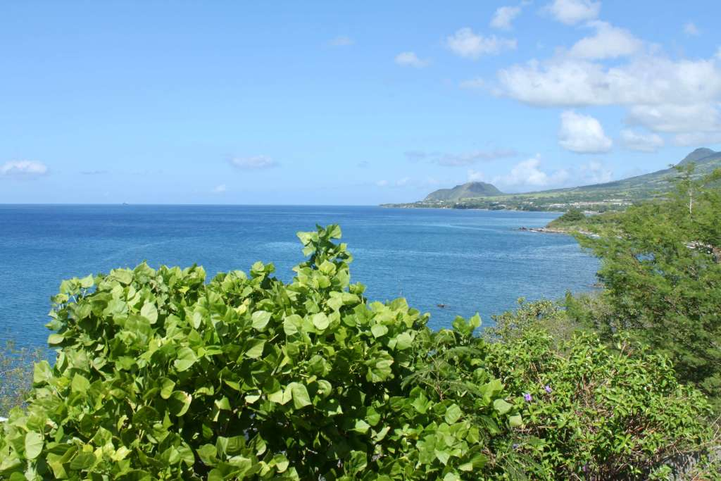 Coastline of St. Kitts with lots of green vegetation