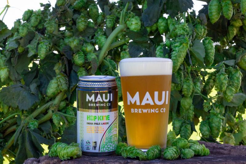 Maui Brewing Hop Kine