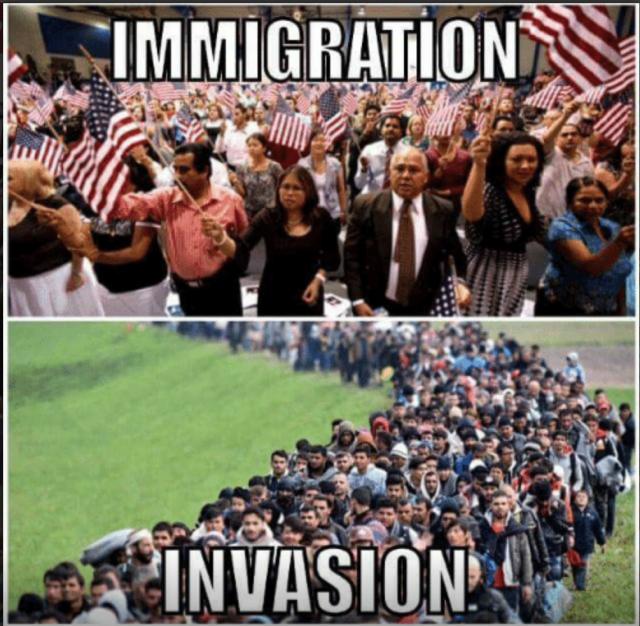 Immigration vs Invasion