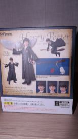 FOTF S.H Figuarts Harry Potter Review 1