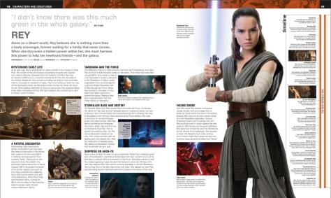 Ultimate Star Wars New Edition Rey