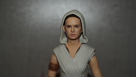 Star Wars The Rise Of Skywalker S.H. Figuarts Rey And D-O Review