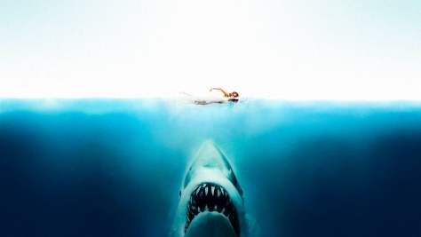 Jaws 009