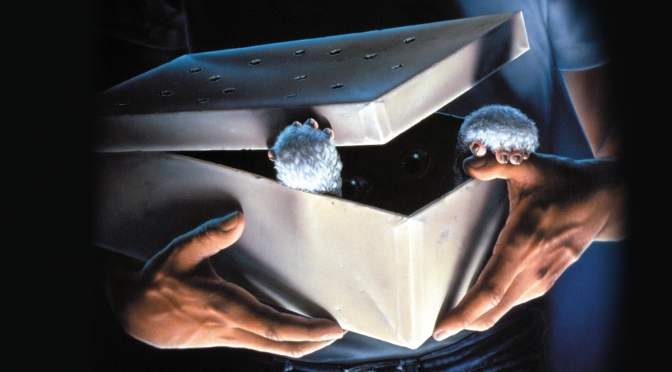 Christopher Columbus Says 'Gremlins 3' Is Still In Development