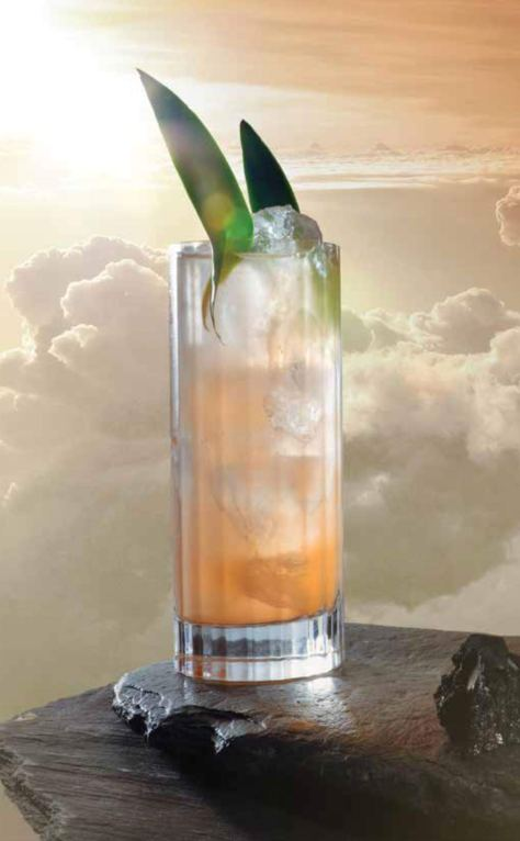 Star Trek Cocktails: A Stellar Compendium Cover