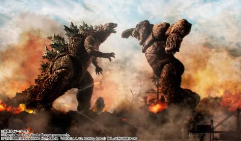 Godzilla Vs Kong Tamashii Nations